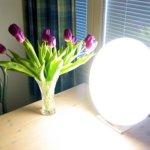 Tageslichtlampe Lichtdusche Lichttherapie | von User:Mysid [Public domain], via Wikimedia Commons - https://commons.wikimedia.org/wiki/File:Bright_light_lamp.jpg | Anwendung einer Tageslichtlampe