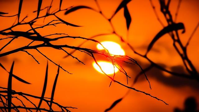 Sonnenlicht Tageslicht Lampe Vitamin D